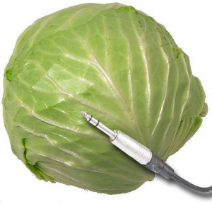 cabbage_cable