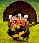 triple_turkey